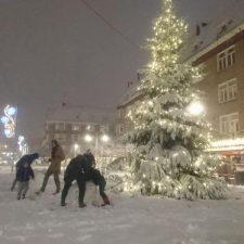 Kerstboom Maasstraat Sneeuw 2017